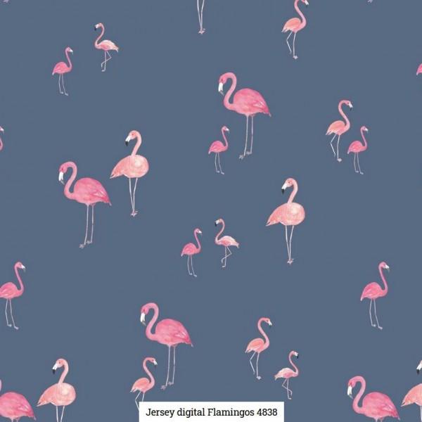 Jersey Digital Flamingos Artikelnr.:SL4838-8