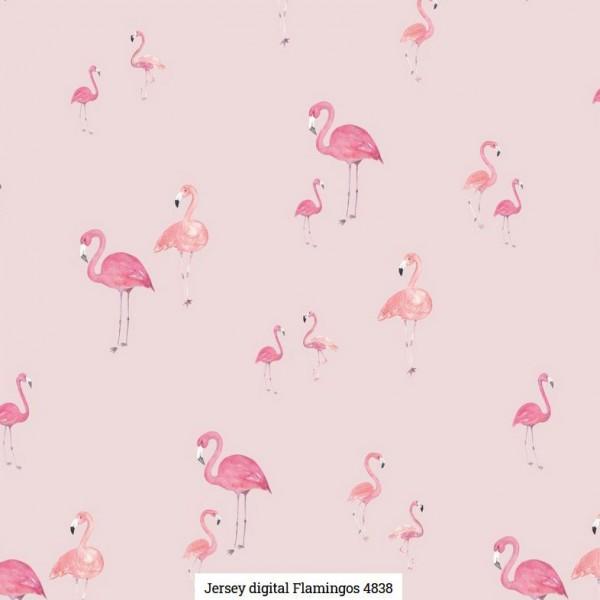 Jersey Digital Flamingos Artikelnr.:SL4838-1011
