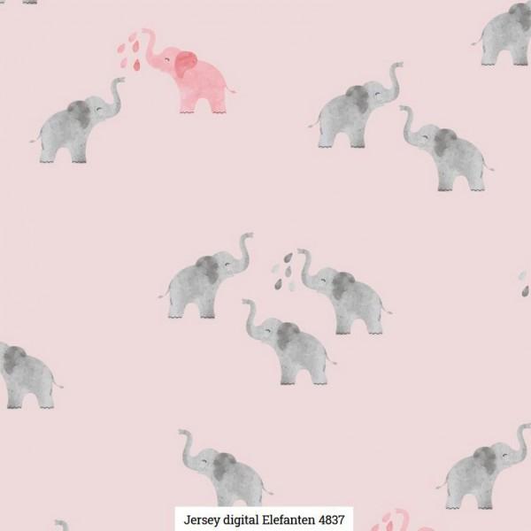 Jersey Digital Elephant Artikelnr.:SL4837-1011