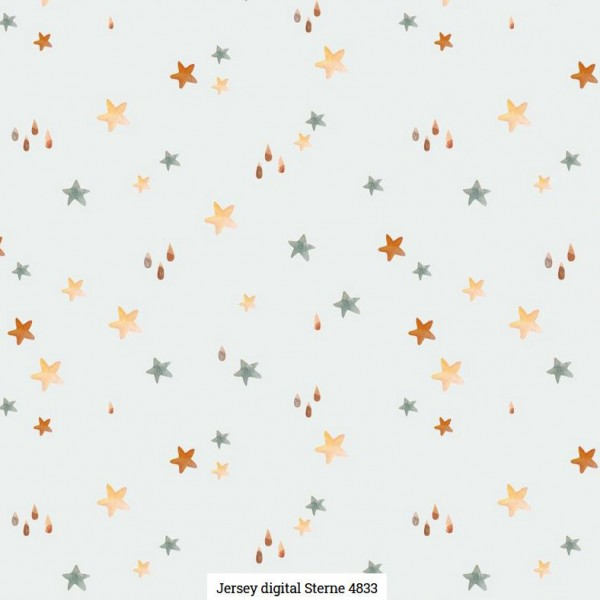 Jersey Digital Stars Artikelnr.:SL4833-51
