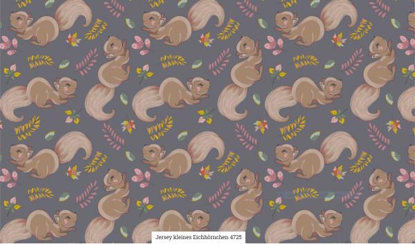 Jersey Eichhörnchen Artikelnr.:SL4725-68