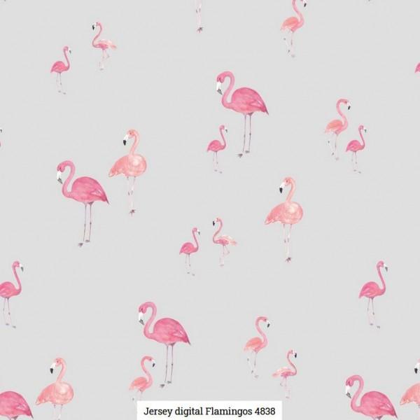 Jersey Digital Flamingos Artikelnr.:SL4838-1262