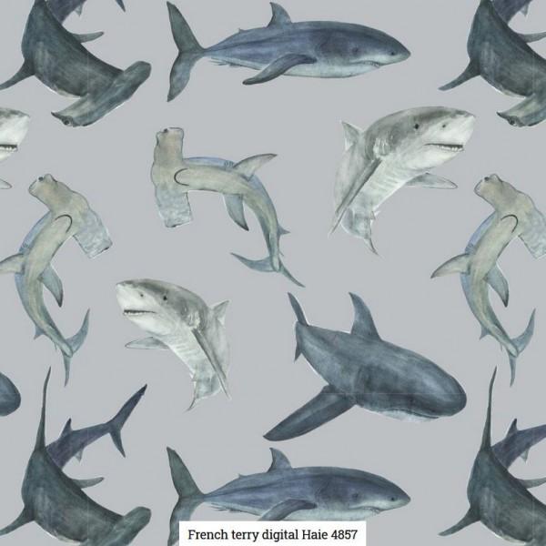 FT-Digital Sharks Artikelnr.:SL4857-1264