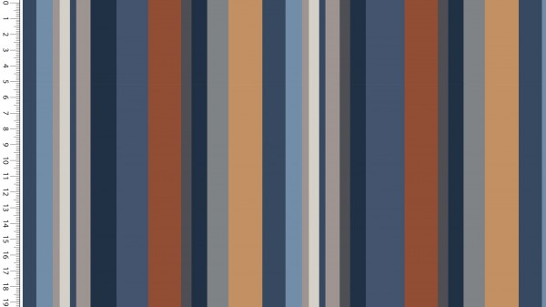 Modal FT Lady Looks Retro Stripes D.Jeans